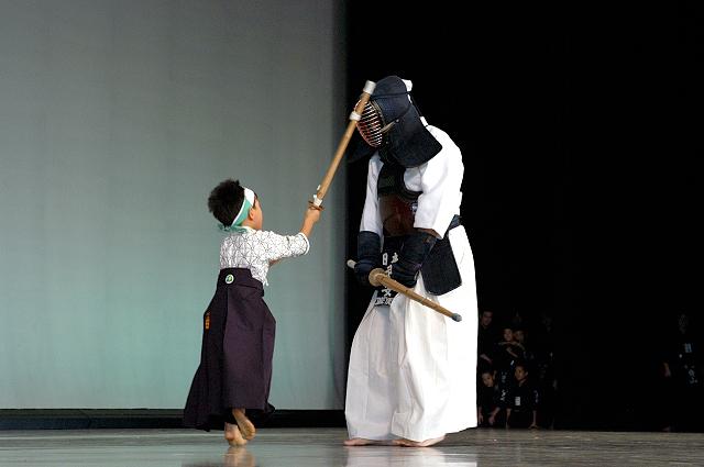 comité national kendo